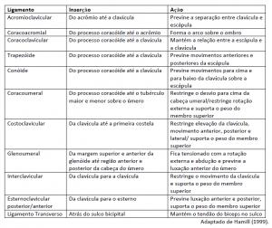 tabela ligamentos